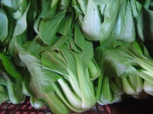 ผักกวางตุ้งฮ่องเต้